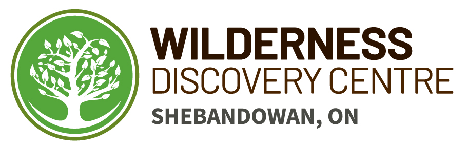 wildernessdiscovery.net