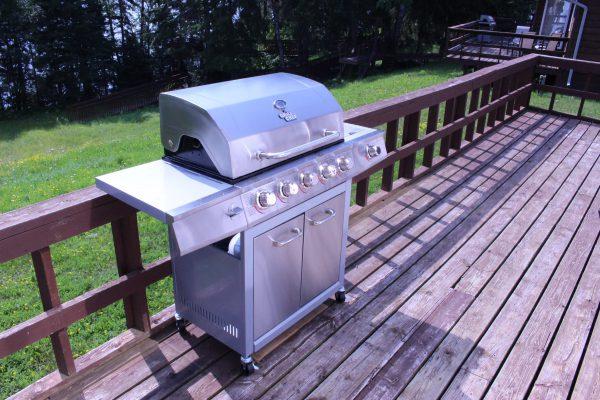 Cabin 1 Barbecue